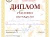 diplom-22.10.2016-dshinekl.jpg