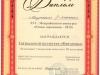 diplomy-2015-2016-dshinekl (51).jpg