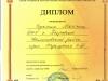 diplomy-2015-2016-dshinekl (52).jpg