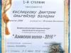 diplomy-2015-2016-dshinekl (53).jpg