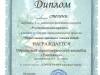 diplomy-2015-2016-dshinekl (25).jpg